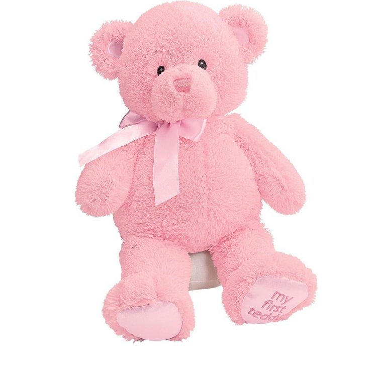 a pink teddy bear for my friend who chose to leave?