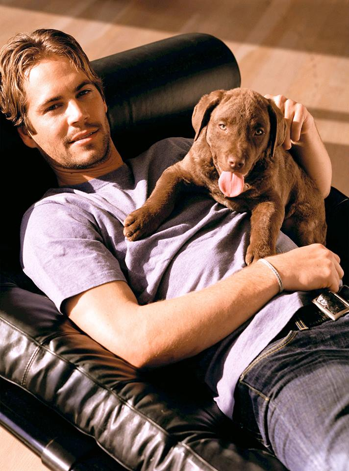 "PAUL WALKER (R.I.P.) AND HIS ""DOG"""