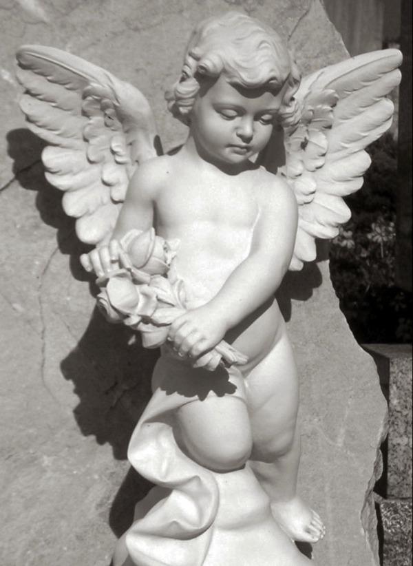 angelx3